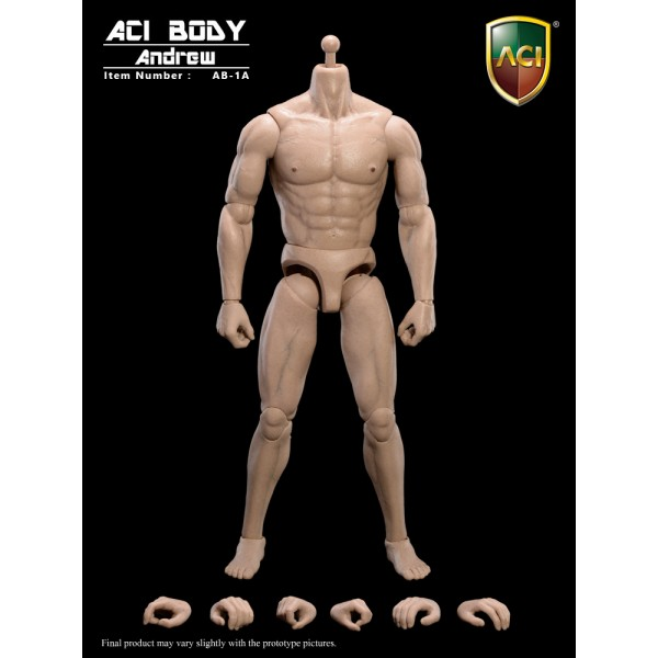 "AB-1A/AB6 Muscular Body ""Andrew"" : Caucasian Skin Tone (1:6)"