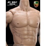 "AB-1A/AB6 Muscular Body ""Andrew"" : Caucasian Skin Tone (1:6)"