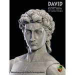 AD010 Action Statue:David (Michelangelo) Marble-like