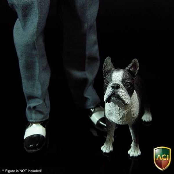 ACI767  Dog Boston Terrier (1:6)