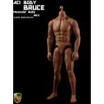 "AB13 Muscular Body Mk2 ""Bruce"" : Latin American Skin Tone (1:6)"